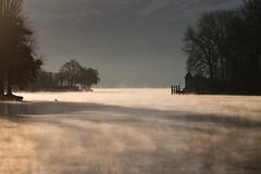 725A6032 / Lake Thun and Aare (denn22) Tags: aare thun be denn22 eos7d dezember 2016 december thunersee schweiz nebel switzerland river lake see lakethun