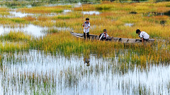 After school (2) (-clicking-) Tags: streetphotography streetlife colorful life dailylife reflection mirror flood floodseason yellow vietnam country countrylife children childhood childish childlike