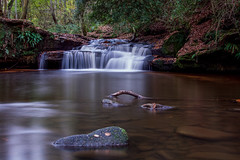 Goit stock woods (chrisfisherman1) Tags: longexposure ndfilter 3minutes flowingwater