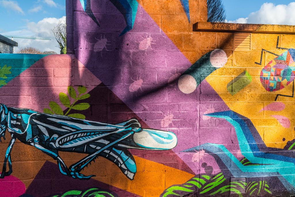 NEW STREET ART AND NEW TEAROOMS [HERBERT PARK DUBLIN]-124056