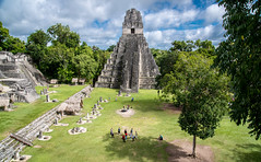 20161120-1127 Belize_DSC5469.jpg (koloding) Tags: ancient belize tikal mayan centralamerica pyramids culture decay mayanruins tropical indian