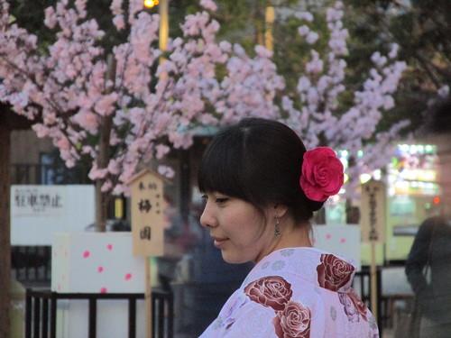 Femme en kimono et sakura, Asakusa, Tokyo, Japon