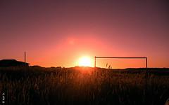 atardecer (*paz) Tags: sunset sol atardecer rosa cielo campo feliz surdechile porma