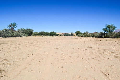Ugab river sand bed