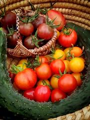 Today's harvest! (lugnochfin) Tags: food vegetables tomato vegan yum cucumber harvest vegetarian organic veggies homegrown