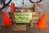 Ocote (Sergio Tohtli) Tags: mensajes impactoambiental environmentalimpact