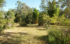 Lot 99 Lewis Lane, Mororo NSW