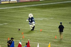 PanAm/ParaPanAm 2015 Half Time Mascot Games (Stephen Gardiner) Tags: toronto ontario football pentax skydome cfl argos 2014 100300 winnipegbluebombers torontoargonauts canadianfootballleague k20d
