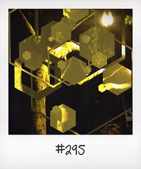 "#DailyPolaroid of 20-7-14 #295 • <a style=""font-size:0.8em;"" href=""http://www.flickr.com/photos/47939785@N05/14746886892/"" target=""_blank"">View on Flickr</a>"
