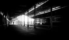 Vieja estación (Nicolas Alejandro Street Photography) Tags: city railroad travel bw argentina silhouette architecture contrast tren rail railway trains olympus trainstation rosario estacion rails blacknwhite bnw 17mm