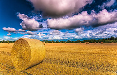 Harvest (mnielsen9000) Tags: clouds landscape denmark farming harvest haybale nikond810 nikon1635