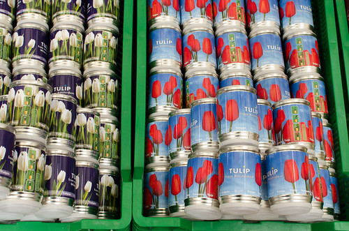 Canned Tulips