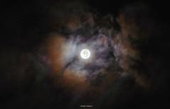Supermoon. (FIVE S.P.) Tags: light sky cloud moon night thailand north thai ไทย กำแพงเพชร พระจันทร์ เมฆ supermoon แสง