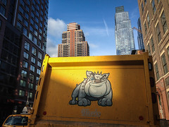 Yellow Truck with Pitbull Cartoon Graffiti - Hell's Kitchen, NYC (ChrisGoldNY) Tags: city nyc newyorkcity morning travel urban newyork dogs yellow poster graffiti forsale manhattan pitbull viajes posters albumcover trucks gothamist bookcover cartoons bookcovers hellskitchen albumcovers licensing iphone chrisgoldny chrisgoldberg chrisgold chrisgoldphoto chrisgoldphotos