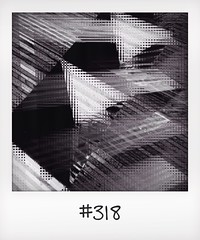 "#DailyPolaroid of 12-8-14 #318 • <a style=""font-size:0.8em;"" href=""http://www.flickr.com/photos/47939785@N05/14922141096/"" target=""_blank"">View on Flickr</a>"
