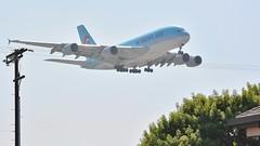 HL7612 / Airbus A380 / LAX (tom x wang) Tags: airplane losangeles airport nikon aviation lax airlines