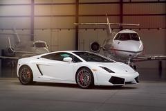 Lamborghini Hanger (Sinned706) Tags: airplane automotive exotic lamborghini supercar hanger gallardo lp5602 speedtitans