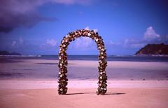 Just Married (Jack Denny) Tags: sea film analog island 50mm iso100 nikon married f14 seychelles e100vs fm2 mahé