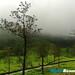 2014-Mahindra-Great-Escape-Sakleshpur-25