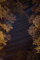 KOA Copake Star Trails 08232014_2_sig (Fadde Photography) Tags: trees night nighttime startrails campgrounds copake