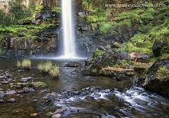 LONE CREEK FALLS, SABIE, MPUMALANGA, SOUTH AFRICA. (IMAGES OF WALES.... (TIMWOOD)) Tags: africa green grass creek waterfall rocks stream south falls historic lone mpumalanga nelspruit sabie hazyview kruga