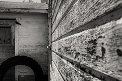 Down on the farm-3.jpg (Geek Dad Photography) Tags: michigan southlyon erwinorchards d5100