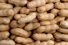 ABC's of Healthy Foods: Nuts: P = Peanut: helps fight depression. (gusdeli) Tags: healthy peanuts health medicine diet alternative nutrition healthyfoods