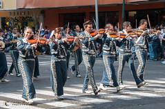 De Cocula es el mariachi (CCalaflo) Tags: nikon desfile evento mariachi cultural cmarasfotogrficas d300s