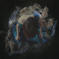 arise from the ashes. (Stellie Chavez) Tags: fear fineartphotography fineart conceptualphotography birds feathers arise surrealphotography surreal elliechavezphotography