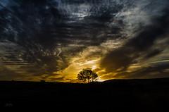 Campo (Jos Hidalgo) Tags: castilla vizmalo atardecer nubes clouds cielo sky sunset siluetas wow