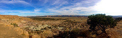 A view toward the south, toward Acoma Pueblo (on the right by the pine tree) and toward Enchanted Mesa (on the left).  New Mexico, USA. (cbrozek21) Tags: newmexico panorama acoma mesa enchantedmesa astoundingimage