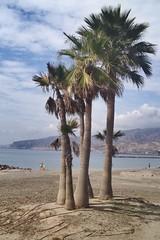 Playa el zapillo #almeria #playa #octubre #sol (maricg1) Tags: almeria playa octubre sol