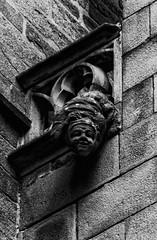 GARGOUILLE VANNES-0390 (anathema56) Tags: vannes cathedrale gargouille morbihan