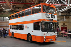 Preserved GMT 8151 (VBA 151S) (SelmerOrSelnec) Tags: preserved leyland atlantean northerncounties vba151s cheetham manchester museumoftransport boylestreet gmt bus bigorange runningday