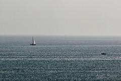 Barco (almorenoa) Tags: barco velero boat sailingship torrevieja alicante mediterráneo comunidadvalenciana españa canoneos6d sea mar