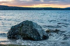 Rock in lake Vsman (Henrik Axelsson) Tags: bergslagen foliage forest lake landsbygd ludvika mountains rock sj skog sten sunset trees trd vatten vinter vsman water winter dalarnasln sverige se