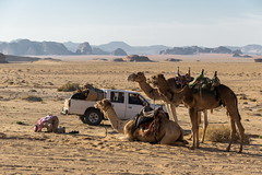 Jordanie 9 (Siden) Tags: jordanie wadi rum desert priere