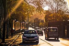 Shined City (ImSaidoww) Tags: landscape nikon reedit hdr richtone nikond5100 nikonphotography manzara autumn sonbahar shine shining sunshine 85mm city way road cars leaves tree sunray 18g istanbul inspired