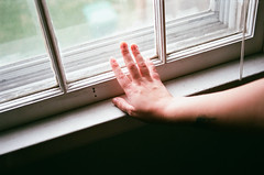 (femme_bizarre) Tags: hand 35mm selfportrait 35mmfilm self arm analog windowlight window woman girl soft softlight shadow sunshine