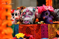 Day of the Dead 2016 17 (part 1) (Ruben Gusman Photography) Tags: thenelsonatkinsmuseumofart mariachis diadelosmuertos dayofthedeadskulls skeletons death donquioto kansascity