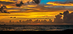 A dawn of pure gold. (The Sergeant AGS (A city guy)) Tags: miamibeach sobe southpointebeach earlyinthemorning early skies seashore seascape dawn gold exploration experiment walking waterways