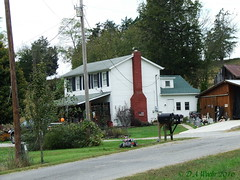 Home in the Holler (Picsnapper1212) Tags: home house abode dwelling country rural scene ohio