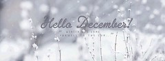 Hello December! (CAVAN299) Tags: hellodecember winter 12 colder