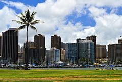 On the Isalnd (jcc55883) Tags: magicisland alamoanapark skyline waikikiskyline hawaii oahu honollulu hotels condos highrise hawaiiprince ilikai nikon nikond3200 d3200