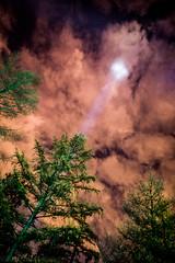 Piney Beacon (Mista Sparkle) Tags: holidaylights mortonarboretum illumination night clouds light beacon