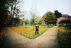 copenhagen, november 2014 (kodacolorframes) Tags: lomo lca xpro 35mm analogue copenhagen kobenhavn denmark danish park