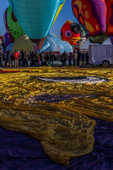 Balloon Fiesta 2016 | A Peep at Mr Fish | Morning Ascension 07:12AM (Facundity) Tags: mrfish hotairballoons specialshapes specialshapesrodeo aibf albuquerqueinternationalballoonfiesta balloonfiesta2016 balloonfiestapark albuquerque newmexico envelope canoneos5dmkiv ef70200mmf4lisusm