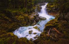 Silver Falls (dwolters2) Tags: rainier silver falls national park on1 pentax k1 dark fall rain