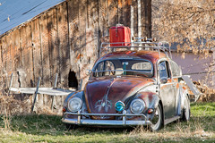 Patina (Eric Arnold Photography) Tags: vw volkswagen bug beetle oval window 1957 patina rust rusty chrome roof rack coke cocacola cooler barn shed abandoned old decrepit rundown vehicle auto automotive outdoor shadow trees utah ut hobblecreek springville low lowered 2016 skate skateboard