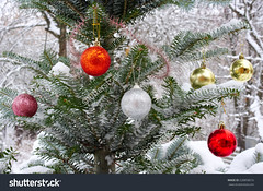 stock-photo-christmas-tree-outside-in-the-snow-decorated-with-christmas-toys-528858016 (Andrey_001) Tags: balls christmas claus cold cool december figurines finery fir fluffy green holiday mirror new nobody ornamentation outdoors ping red santa snow spruce toys tree white wind winter year yellow
